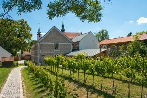 Vino Versum Poysorf - WEIN+TRAUBEN Welt © Vino Versum Poysdorf/Michael Loizenbauer