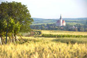 Weinstadt Poysdorf © veltlinerland.at, Michael Himml