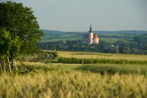 Weinstadt Poysdorf © veltlinerland.at Michael Himml